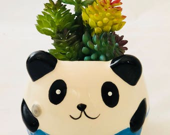 Animal Panda Pot with Artificial or Real Succulent Plant