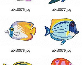 tropical fish and coral reef illustrations ocean clip Sea Shell Clip Art Beach Shells Clip Art