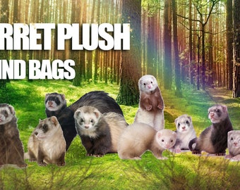 Ferret Plush Blind Bags MINKY