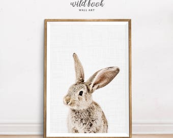 Rabbit Print, Nice Rabbit, Nursery Decor, Baby Animal Print, Nursery Wall Art, Nursery Animal Prints, Woodland Animal Print, Photography