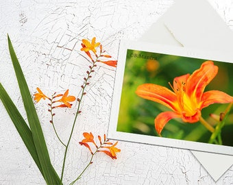 Blank Note Cards, Photography cards, Floral Photography, Photography Note Card, Greeting Cards blank, Flower Cards, mother's day