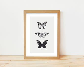 butterfly print, butterflies print, animal drawing, vintage butterfly, insect drawing, animal ink drawing, scientific butterfly art print