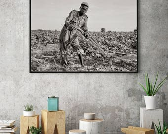 African American Photo, Portrait of Black Boy, 1937, near Americus, Georgia, Black Art Print, Wall Art