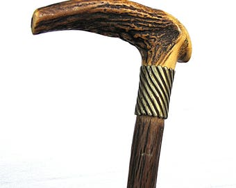 Vintage walking cane / walking stick; Forrester style with deer antler handle and knotted wood.
