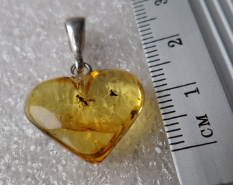 Genuine Baltic Amber Honey HEART Baltic Amber 925 Sterling Silver Pendant with Insect WASP