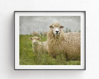 Sheep art, Farmhouse wall decor, Printable photography, Lamb printable, Mom and baby picture, sheep photography, cottage decor, farm animal