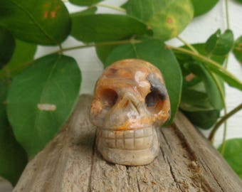 Crazy Lace Agate Skull - Natural Gemstone Carved Skull