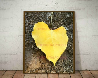 Yellow Heart Leaf Digital Photography - Instant Digital Download - Printable Nature Artwork - Yellow Love Photo Print - Digital Photography