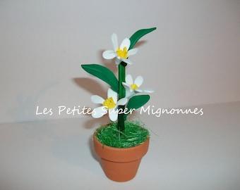 Miniature: mini flower pot, jasmine foam