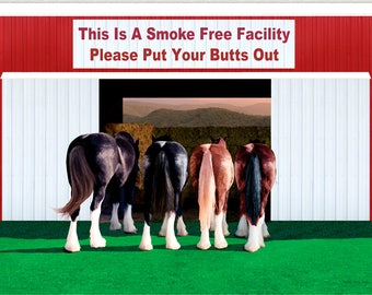No Smoking Sign Please Clydesdales Draft Horses Out Door