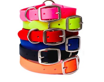 Waterproof Dog Collar with Heavy Duty D-Ring   For Small, Medium, or Large Dogs   Amish Made