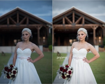 LHP Wedding Presets Vol. 1
