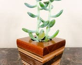 Desktop Planter