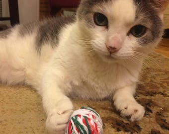 Catnip Yarn Toys