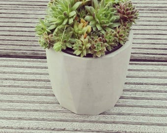 concrete planters, concrete pot, concrete pots, concrete planter, concrete design, succulent pot, succulent planter, home decoration
