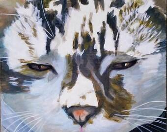 Custom acrylic pet portraits