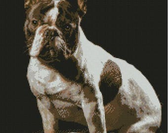 French Bulldog Puppy Counted Cross Stitch Kit