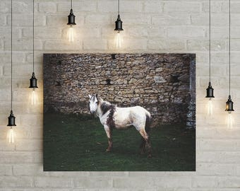 Horse Photography, Dreamy Wall Art, Castle Photography England, Medieval Castle, Knights, White Horse, Fine Art Print, Baby Girls Room Decor