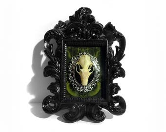 Framed Bat Skeleton (Skull) - Real Bat - Gothic Home Decor - Taxidermy Bat - Black Baroque Frame - Halloween Decor - Bat Decoration