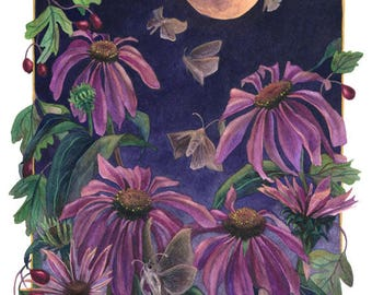 Fine Art Print of Original Watercolor Painting - Moon Moths