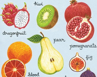 Illustrated Fruit Print, Fruit Art Print, Garden Art, Kitchen Art, 8 x 10 Art Print
