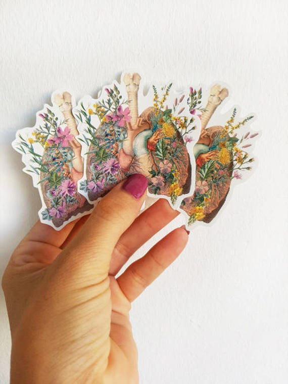 Lungs and Heart with wild flowers ,Anatomy stickers set, laptop stickers, Decal sticker, Medical student gift, Anatomical stickers STC014
