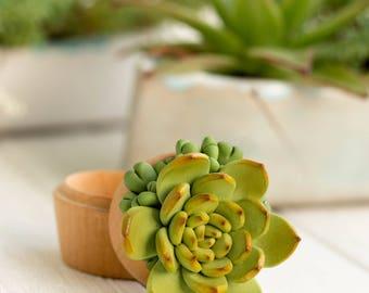 Green Orange Succulent Ring Box Bearer Case Wholesale Wooden Engagement Ring Holder Proposal Ring Case Wedding Bridal