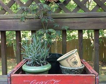 Coke Crate / Vintage Wooden Coca Cola Crate / Garden Box / Red Decor