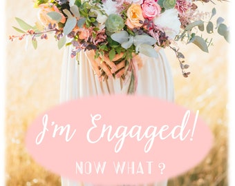 Wedding Planning Book, I'm Engaged, Now What? book, Weddings for Brides, Engagement, Planning a wedding