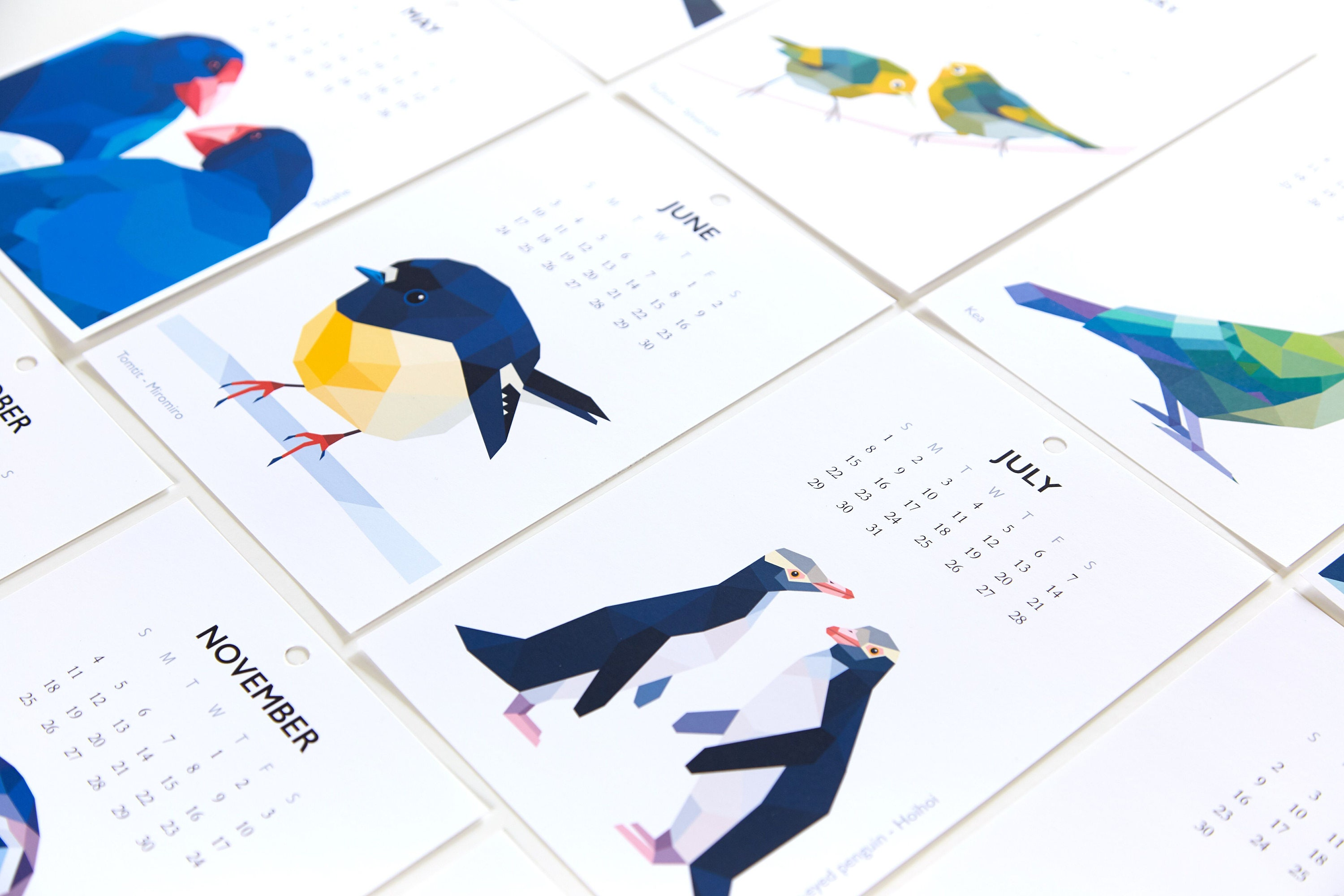 Calendar Art Nz : On sale calendar kiwi bird new