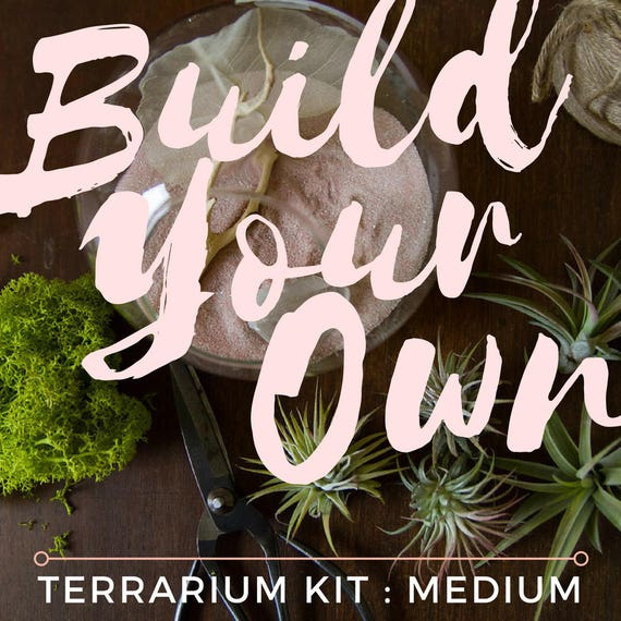 Medium Custom Terrarium Kit || Build Your Own Air Plant + Crystal DIY Kit