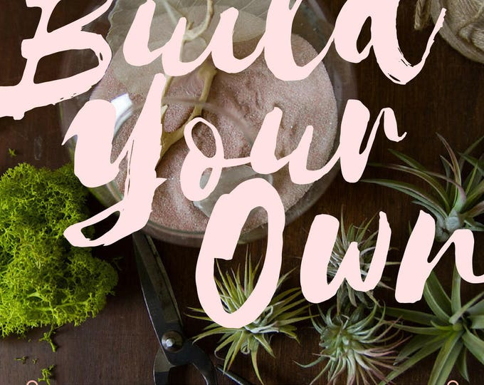 Featured listing image: Medium Custom Terrarium Kit || Build Your Own Air Plant + Crystal DIY Kit