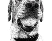 Digital Dog Portrait - Custom Pet Portrait, Custom Dog Portrait, Original Art, Made to Order