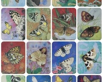 Butterflies. Issue VIII - Artist L. Aristov - Set of 16 Vintage Soviet Postcards, 1986. Moths Insects Entomology Natural History Art Print