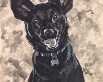 Charcoal Pet Portraits