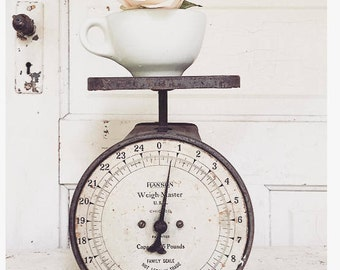 Vintage Farmhouse Scale Rustic Metal Hanson Co
