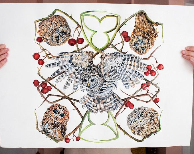Watercolor Owls, Large ORIGINAL Watercolor Painting Owls Art, Owl Watercolor, Owl Art, Watercolor Owl Painting, Owl Wall Art, Owls Painting