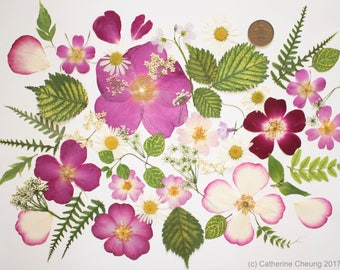 Real Pressed Flowers Roses Petals Dried leaves flowers Craft Supplies Card Embellishments Scrapbooking supplies Organic Natural