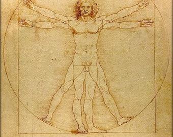 40% OFF SALE Poster, Many Sizes Available; Vitruvian Man (C. 1485) Accademia, Venice Leonardo Da Vinci
