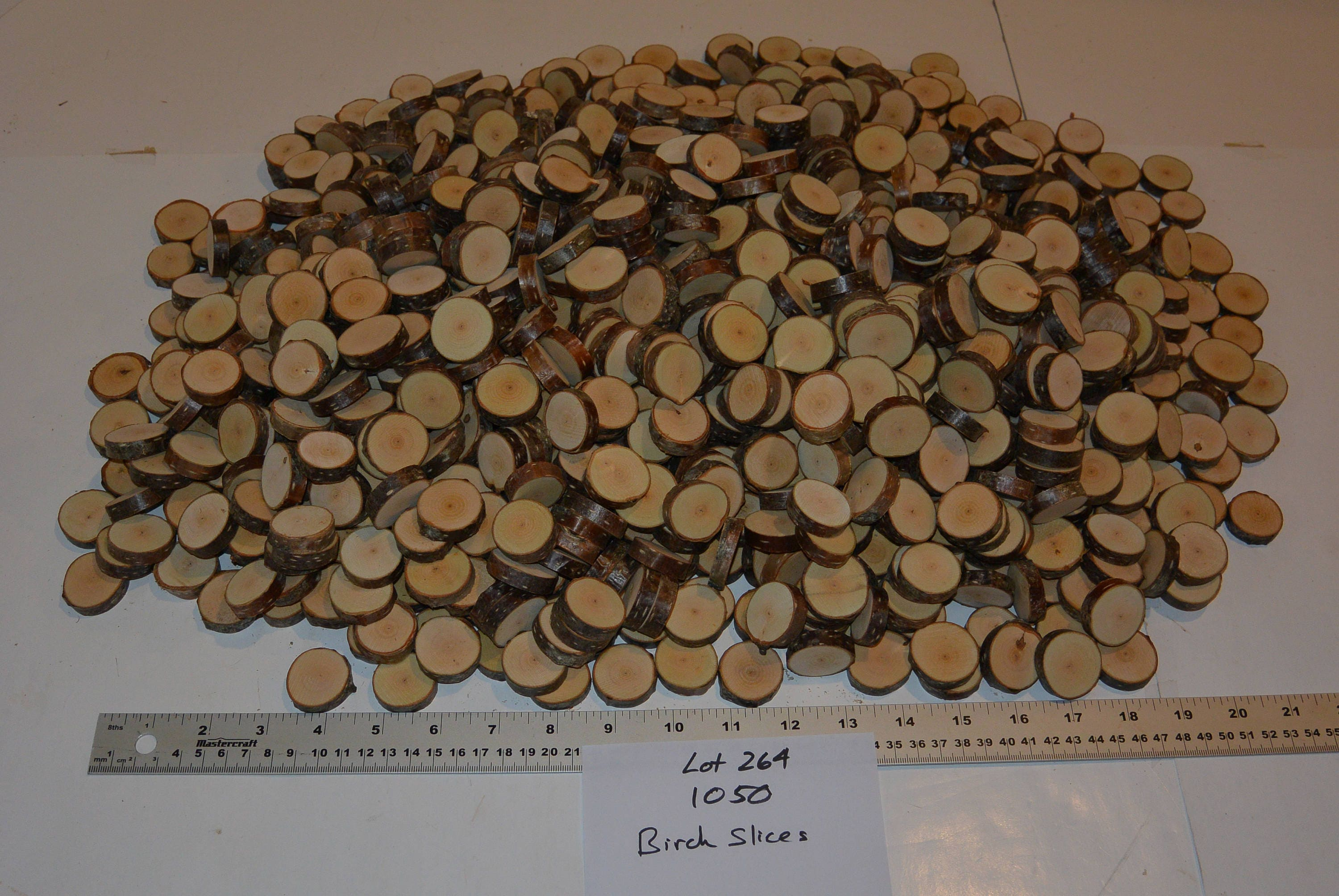 1050 birch slices birch tree slice birch tags mini wood slices sold by natureontheinside reviewsmspy