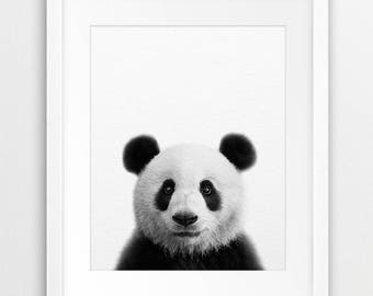 Panda Wall Decor Etsy