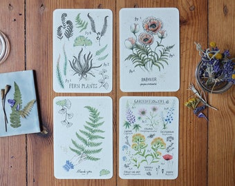 Ferns and Flowers Card Set of 4