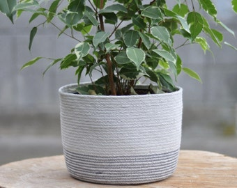 Fig - medium plant basket or multi-purpose storage basket