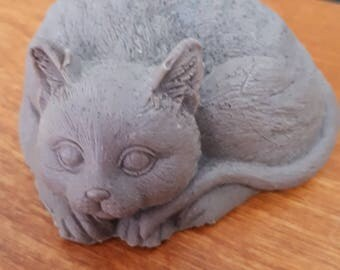 SOAP with chocolate brown cat