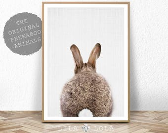 Nursery Print, Bunny Rabbit Poster, Printable Nursery Decor, Nursery Animal Print, Digital Download, Printable Kids Gift, Kids Room Poster