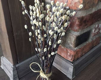 50 Dried pussywillow branches, dried branches, Catkins, natural dried branches, vase filler, spring decor, natural dried flowers