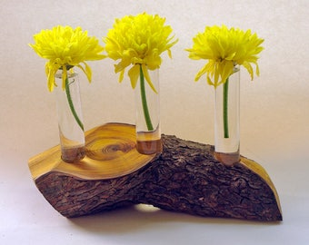 Etsy your place to buy and sell all things handmade for Test tube flower vase rack