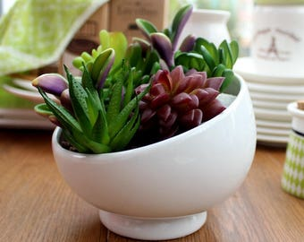 Small White Ceramic Flower Pot Indoor Succulent Planter Vase Bevel Opening Ceramic Bowl for Indoor Gardening Desk Decoration