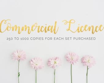 Commercial Licence 250 - 1000 Copies - For Clip Art Sets