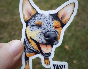 """Cattle Dog Sticker, Blue Heeler Sticker, Vinyl Stickers, """"YAS!!"""""""